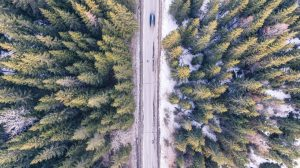 Birdseye view of road in forest - How to sell a car on gumtree